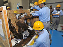 "June 21th, 2011, Tokyo, Japan - Workers take replica skeletons out of crates before assembling a skeletal model of the Tyrannosaurus at the National Science Museum in Tokyo on Tuesday, June 21, 2011. The Tyrannosaurusthe greatest carnivorous dinosaur inhabiting the North American Continent about 70 million to 65 million years agowill face the Triceratops in the special exhibition ""Dinosaurs Expo 2011"" at the museum in July. (Photo by Natsuki Sakai/AFLO)"