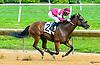 Thealkascrafty winning at Delaware Park on 7/5/17