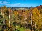 Bieszczady (woj. podkarpackie), 2018-10-12. Jesień w Bieszczadach.