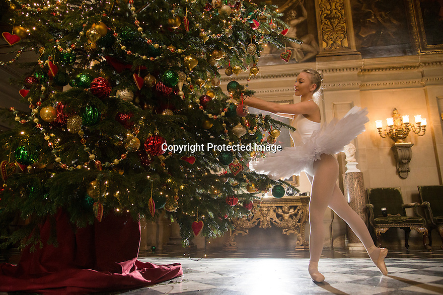 04/11/16<br /> <br /> Commission Mcc0073519 Assigned<br /> <br /> Daisy Kerry (17).<br /> <br /> Ballerinas pose for photographs in the Painted Hall at Chatsworth House to mark the start of the stately home's Christmas themed  'The Nutcracker'. Join Clara's adventures as she is swept away by her Nutcracker Prince until Jan 3 2017.<br /> <br /> All Rights Reserved F Stop Press Ltd. (0)1773 550665   www.fstoppress.com