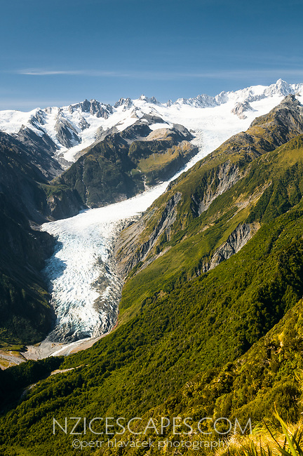 Fox Glacier from Mt. Fox, Westland Tai Poutini National Park, West Coast, UNESCO World Heritage Area, New Zealand, NZ