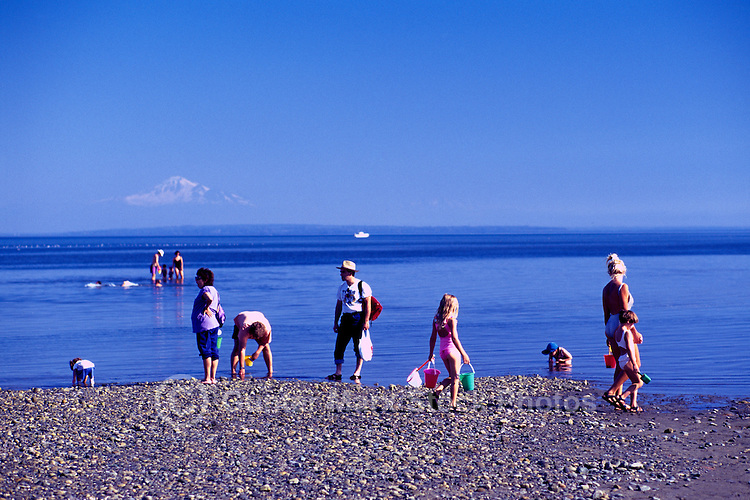 Summer Recreational Activities along Pacific Ocean, Boundary Bay Regional Park, Delta, BC, British Columbia, Canada - Families playing on Sandy Beach - Mount Baker, Washington, USA on Horizon