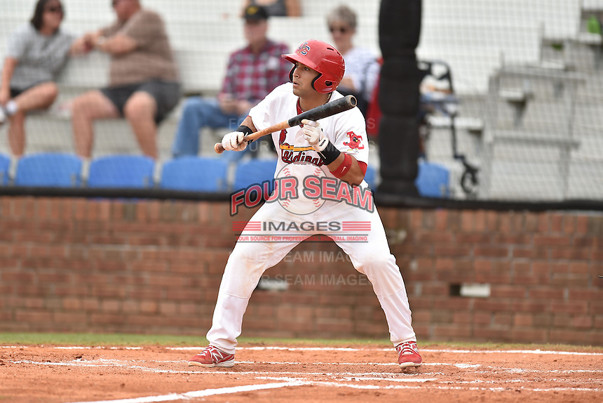 Johnson City Cardinals catcher Jose Godoy #25 squares to bunt during a game against the Bristol Pirates at Howard Johnson Field July 20, 2014 in Johnson City, Tennessee. The Pirates defeated the Cardinals 4-3. (Tony Farlow/Four Seam Images)