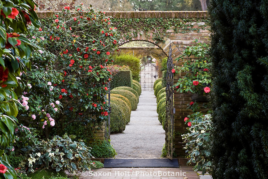 Entry gate and axial path into the Wall Garden at Filoli estate