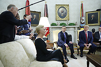 Polish First Lady Agata Kornhauser-Duda (L) with US President Donald J. Trump (R) and Polish President Andrzej Duda (C) during a meeting in the Oval Office of the White House in Washington, DC, USA, 12 June 2019. Later in the day President Trump and President Duda will participate in a signing ceremony to increase military to military cooperation including the purchase of F-35 fighter jets and an increased US troop presence in Poland. Credit: Shawn Thew/CNP/AdMedia