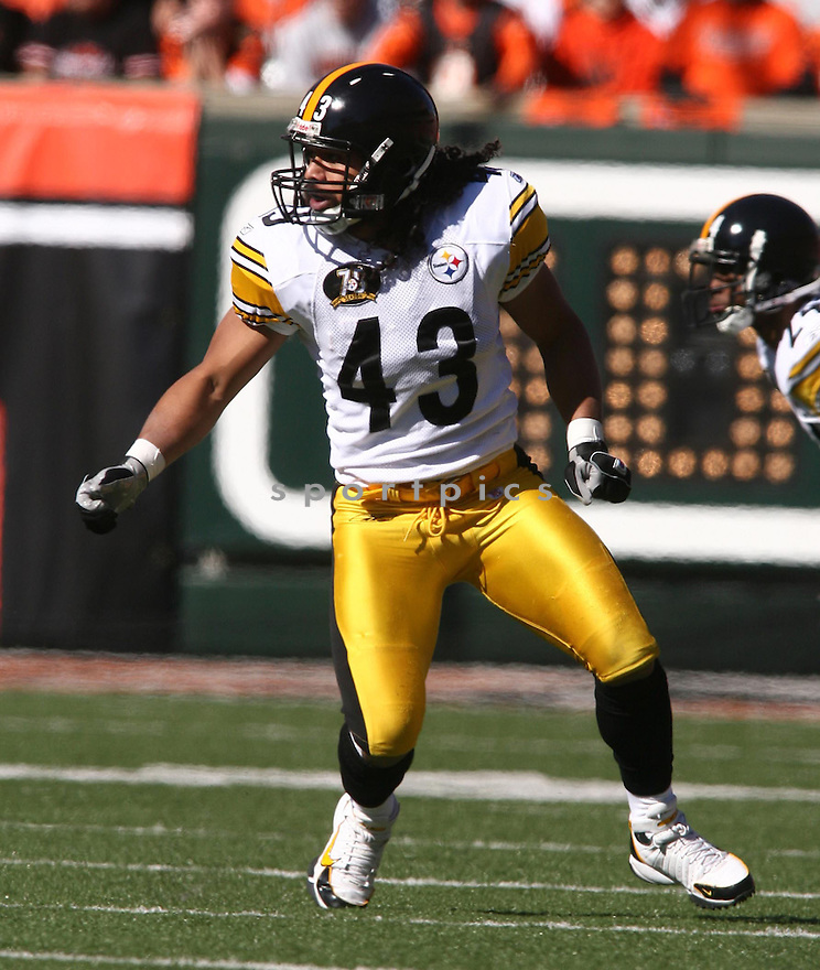 TROY POLAMULA, of the Pittsburgh Steelers, in action during the Steelers games against the Cincinnati Bengals, in Cincinnati, Ohio on October 28, 2007.  ..The Steeler won the game 24-13...COPYRIGHT / SPORTPICS..........