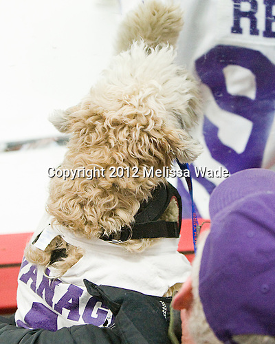 Teddy Kavanagh - The Curry College Colonels defeated the Johnson & Wales University Wildcats 5-4 on Curry's senior night on Saturday, February 18, 2012, at Max Ulin Rink in Milton, Massachusetts.