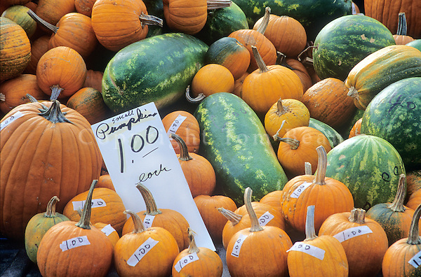 Pumpkins and melons for sale at Saturday Morning Farmers Market in Downtown Des Moines, Iowa, AGPix_0169.