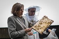 Berlin, Bundesagrarministerin Ilse Aigner (CSU) und Imker Uwe Marth am Mittwoch (22.05.13) auf dem Dach des Berliner Doms anlässlich Vorstellung einer Bienen-App. Ministerin Aigner besichtigt Bienenstöcke auf dem Dach des Berliner Doms und stellt neue Bienen-App vor.