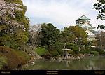 Osaka Castle Hojoen Garden and Tenshu main tower Osaka Japan