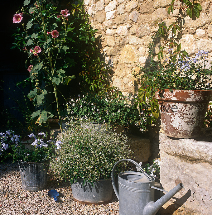 A collection of terracotta plant pots and galvanised steel containers are grouped together next to a stone wall.