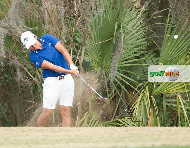 Yani Tsseng  during the First round of the LPGA Coates Golf Championship 2016 , from the Golden Ocala Golf and Equestrian Club, Ocala, Florida. 3/2/16<br /> Picture: Mark Davison | Golffile<br /> <br /> <br /> All photos usage must carry mandatory copyright credit (&copy; Golffile | Mark Davison)