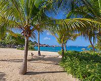 Virgin Gorda, British Virgin Islands, Caribbean <br /> Morning on palms and the beach at Spring Bay, Spring Bay National Park
