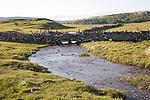 Stream flowing over limestone rock, Malham, Yorkshire Dales national park, England, UK