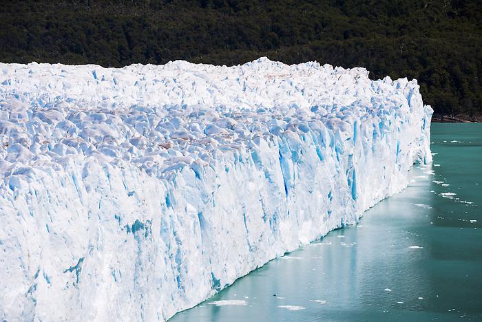 north face glaciar