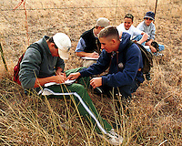 Orienteering classroom outdoors - teenage male students plotting a course on orienteering hike. High School Students. Arizona.
