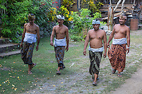 Bali, Indonesia.   Men en Route to a Religious ceremony, wearing sarongs and udengs, the traditional men's head wrap.  Tenganan Village.
