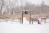 63821-174.03 Rustic fence & arbor with holiday wreath & purple wheelbarrow near prairie in winter, Marion Co. IL