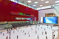 United Arab Emirates, Dubai: Dubai Mall (worlds largest shopping mall), Ice skating rink