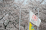 General view, .MARCH 23, 2013 - Football /Soccer : .Plenus Nadeshiko League 2013 .between NTV Beleza 2-0 FC Kibikokusaidaigaku Charme .at Ajinomoto Stadium West Field, Tokyo, Japan. .(Photo by YUTAKA/AFLO SPORT) [1040]