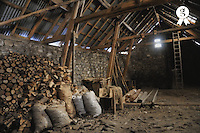 Stack of tree logs in an empty barn, France (Licence this image exclusively with Getty: http://www.gettyimages.com/detail/89627029 )