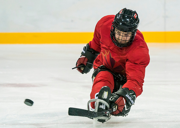 PyeongChang 8/3/2018 - Tyler McGregor, of Forest, ON, as Canada's sledge hockey team practices ahead of the start of competition at the Gangneung practice venue during the 2018 Winter Paralympic Games in Pyeongchang, Korea. Photo: Dave Holland/Canadian Paralympic Committee