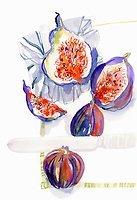 Watercolor painting of whole and halved fresh figs