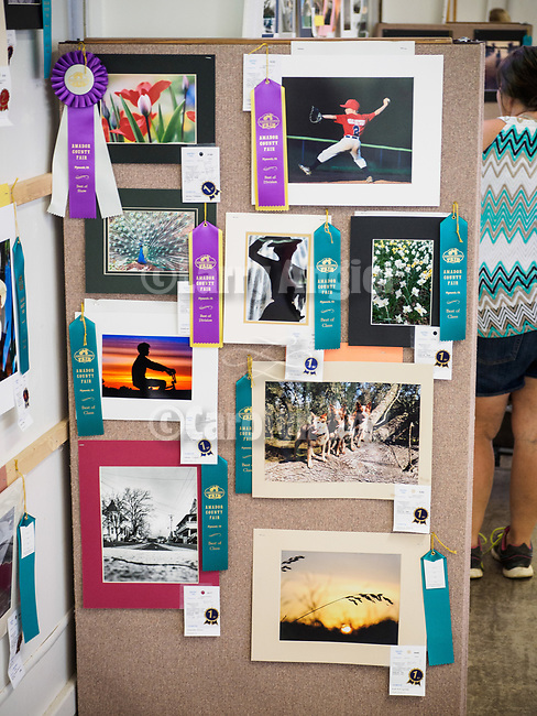 Top prizes in Youth Photography at the 79th Amador County Fair, Plymouth, Calif.<br /> <br /> <br /> #AmadorCountyFair, #PlymouthCalifornia,<br /> #TourAmador, #VisitAmador,