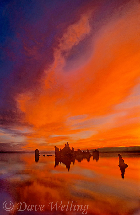 761950002 sunrise turns a sierra wave cloud pink and red and reflects in mono lake with tufas at south tufa beach on mono lake state natural reserve in north central california