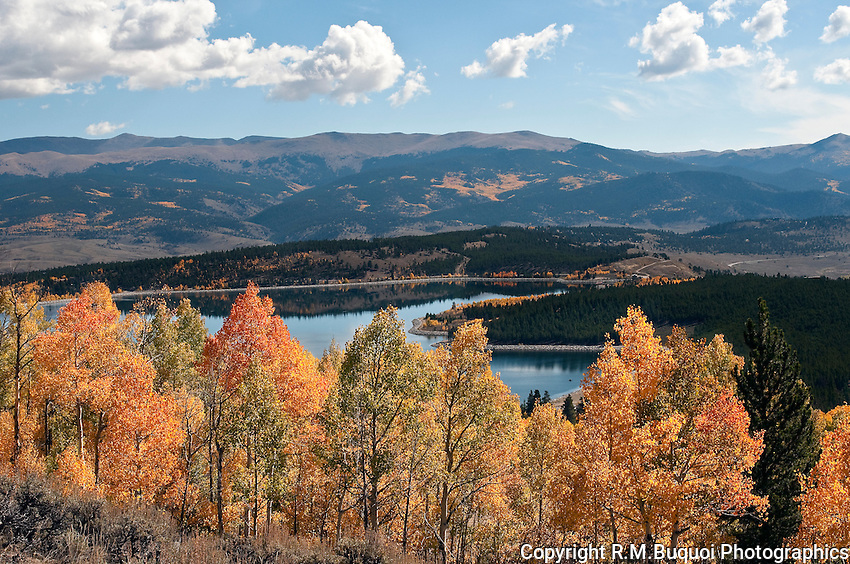 Fall Aspens above Reservoir