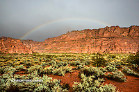 Wow, this was a real bonus as I truly did go out searching for rainbows last night during the rain storm. I was drenched 5 minutes before this opened up for less than a minute and produced this magical light on the freshly rained on desert and red rocks. SNOW CANYON STATE PARK- IVINS- ST. GEORGE, UTAH