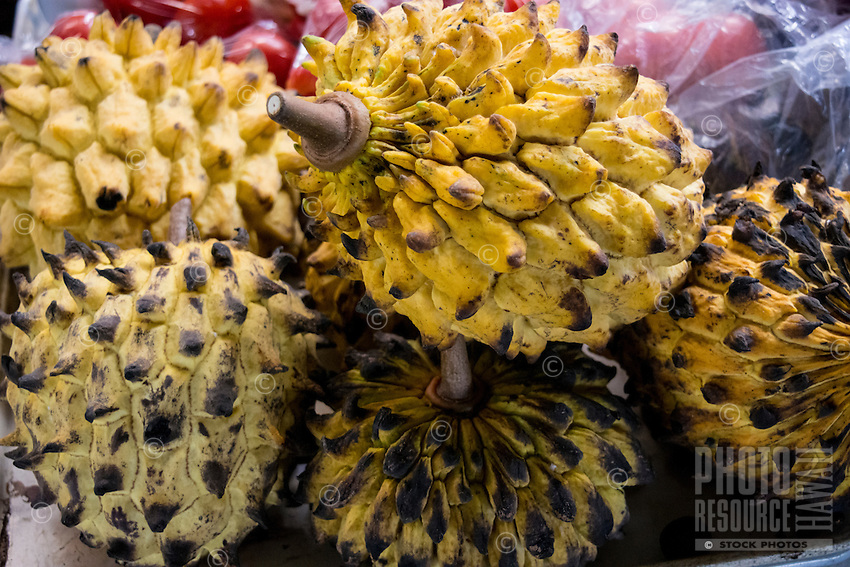 A close-up of durian, a local exotic fruit, Hilo Farmers Market, Big Island of Hawai'i.