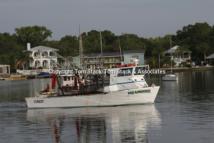 A commercail fishing boat returning to the harbor in Crystal River, Florida