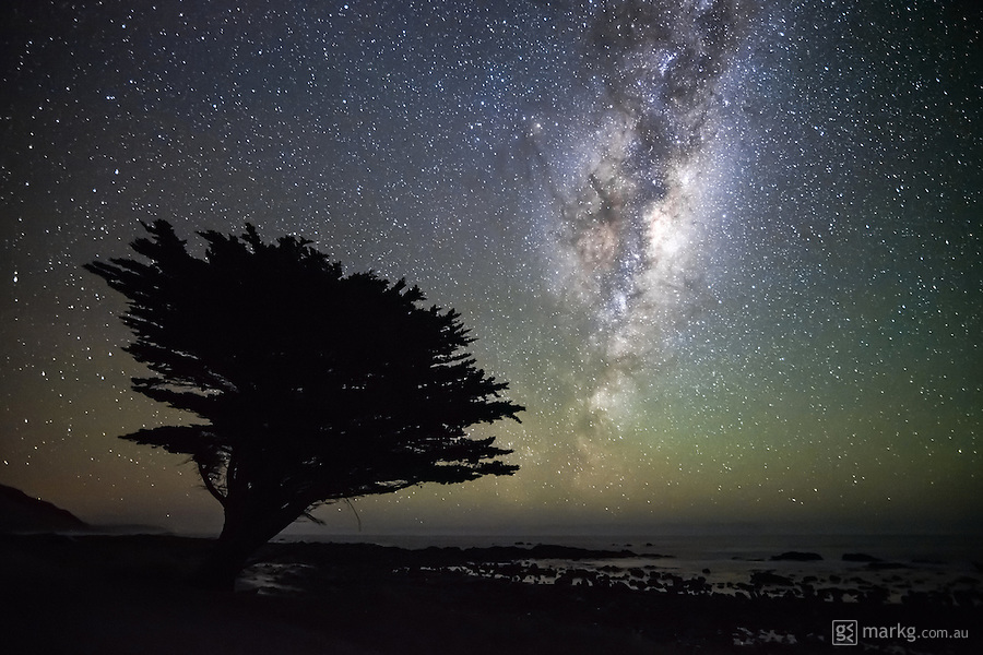 A lone tree stands in silhouette against the night sky with the milky way rising overhead on the south east coast of the north island of New Zealand.