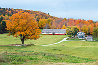 Des Marais Farm, Swallows Nest, Brandon, Vermont.