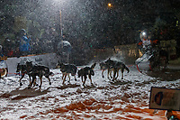 Pete Kaiser runs down Nome's Front Street and into the finish chute  to win the 2019 Iditarod Trail Sled Dog Race. Pete's winning time is 9 days 12 hours 39 minutes and 6 seconds<br /> <br /> Photo by Jeff Schultz/  (C) 2019  ALL RIGHTS RESERVED