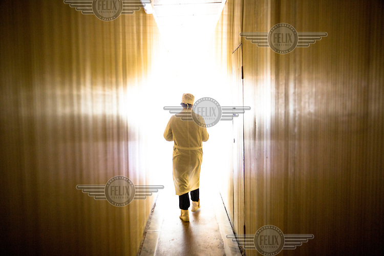 A worker walks down a corridotr in the Chernobyl power plant. The building is still used as offices for the workers cleaning the power plant where Reactor 4 exploded in 1986, causing major leakage of radioactivity.
