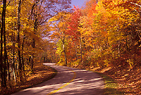 AJ3139, Blue Ridge Parkway, Blue Ridge, autumn, road, Virginia, Blue Ridge Mountains, Appalachian Mountains, The scenic Blue Ridge Parkway in the fall through the Jefferson National Forest in the state of Virginia.
