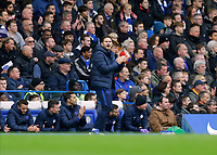 9th November 2019; Stamford Bridge, London, England; English Premier League Football, Chelsea versus Crystal Palace; Chelsea Manager Frank Lampard shouting instructions from the touchline  - Strictly Editorial Use Only. No use with unauthorized audio, video, data, fixture lists, club/league logos or 'live' services. Online in-match use limited to 120 images, no video emulation. No use in betting, games or single club/league/player publications
