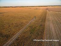 63801-08607 Corn Harvest, John Deere combine harvesting corn - aerial Marion Co. IL