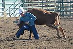 steer wrestling/chute dogging