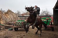RUMAENIEN, 02.2013, Galbinas. Alin Dinu mit seinem Lieblingspferd Viorel (5). Er fuehrt ein kleines Zucht-Gestuet zusammen mit seinem Vater Florin Dinu. | Alin Dinu rides his preferred horse, Viorel, 5 y.o.. He runs a small business growing horses with his father, Florin Dinu. © Bogdan Croitoru/EST&OST