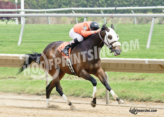 Crimson Pride winning at Delaware Park racetrack on 5/17/14