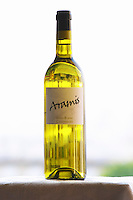 Bottle of Aramis Ugni Blanc Colombard Madiran France