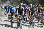 The peloton including Chris Juul Jensen (IRL/DEN) Mitchelton-Scott on sector 3 Radi during Strade Bianche 2019 running 184km from Siena to Siena, held over the white gravel roads of Tuscany, Italy. 9th March 2019.<br /> Picture: Eoin Clarke | Cyclefile<br /> <br /> <br /> All photos usage must carry mandatory copyright credit (© Cyclefile | Eoin Clarke)