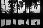 Family silhouetted standing along shore looking at sunset with baby in carrier at GreenLake Seattle Washington State USA