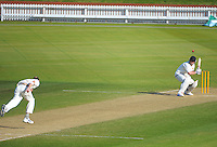 131029 Plunket Shield Cricket - Wellington v Otago