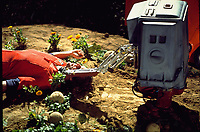 Silent Running (1972) <br /> Mark Persons<br /> *Filmstill - Editorial Use Only*<br /> CAP/KFS<br /> Image supplied by Capital Pictures