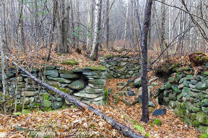 A cellar hole from the 1800s along the old North and South Road (now Long Pond Road) in Benton, New Hampshire. Based on an 1860 historical map of Grafton County this is believed to have been the homesite of Josiah F. Jeffers.
