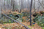 A cellar hole from the 1800''s along the old North and South Road (now Long Pond Road) in Benton, New Hampshire. Based on an 1860 historical map of Grafton County this was the homesite of Josiah F. Jeffers.